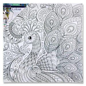 Canvas - Peacock