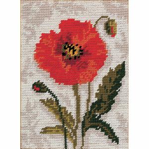 Tapestry Kit: Starter: Poppy