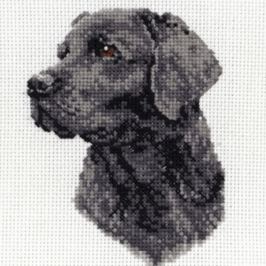 Counted Cross Stitch Kit: Black Labrador