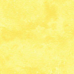 Buttercup 9020-51