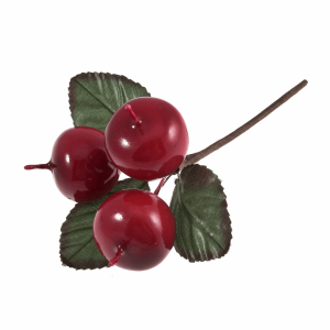 apples F0011.png